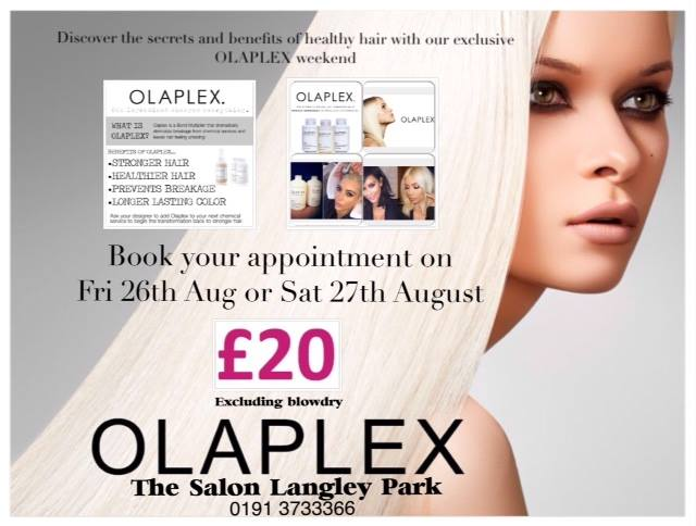 olaplex salons in durham the salon special offer